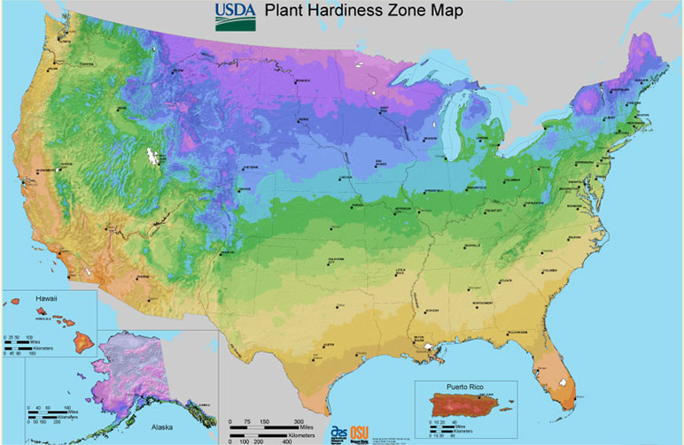 Find My Zone Gardeners Confidence Collection - Us average winter temperature map